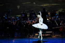 Moscow Novaya Opera Company and Imperial Russian Ballet