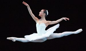 Introduction-to-the-ballet2