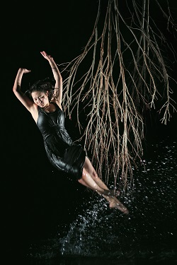 Lisa Wilson, Lake