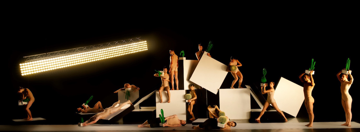 Royal New Zealand Ballet's 'Speed of Light/Cacti'