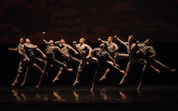 RNZB SALUTE dancers in Neil Ieremia's 'Passchendaele'. Photo by Ellie Richards.