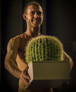 Sydney Dance Company's 'Cacti' featuring dancer Cass Mortimer Eipper. Photo by Peter Greig.