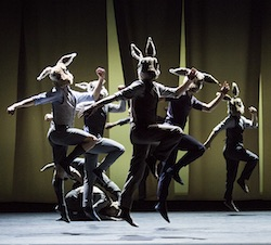 BalletBoyz 'Rabbit'. Photo by Tristram Kenton.