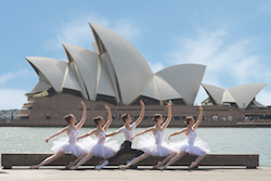 The 2016 Genée International Ballet Competition Final will be held at Sydney Opera House. Photo by Anthony Burns.