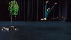 ADT's 'The Beginning of Nature'. Photo by Chris Herzfeld, Camlight Productions.