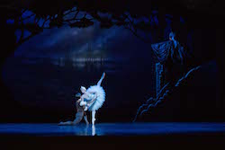 Yanela Pinera and Joel Woellner in Queensland Ballet's 'Swan Lake'. Photo by David Kelly.