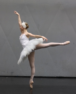 Talia Fidra. Photo courtesy of Queensland Ballet.