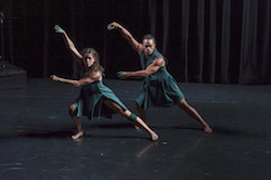 ADT's 'The Beginning of Nature'. Photo by Chris Herzfeld Camlight Productions.