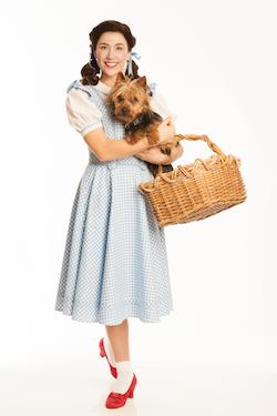 Samantha Dodemaide as Dorothy. Photo by Brian Geach.