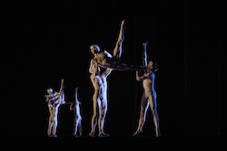 Wayne McGregor's 'Tree of Codes'. Photo by Zan Wimberley.