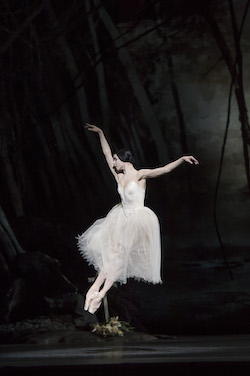 Natalia Osipova as Giselle in 'Giselle'. Photo by Bill Cooper.