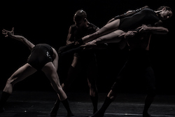 L-E-V Dance Company in 'OCD Love'. Photo by Ron Kedmi.