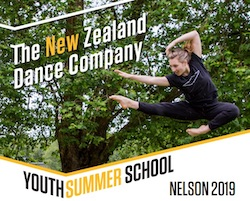 NZDC Youth Summer School.