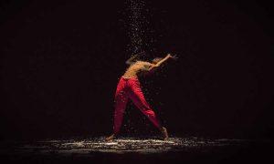 The New Zealand Dance Company. Photo by John McDermott.