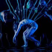 Garry Stewart's 'The Beginning of Nature' by Australian Dance Theatre. Photo by Chris Herzfeld Camlight Productions.