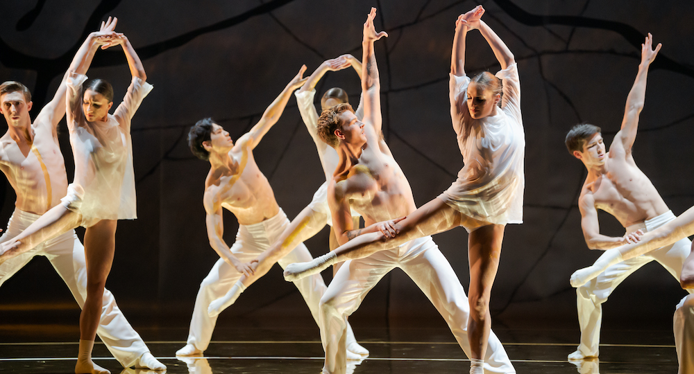 RNZB in 'Venus Rising'. Photo by Stephen A'Court.